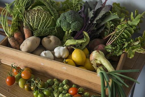 北野には神戸市内にあって畑が広がる北区や西区の農家から定期的に野菜が届くファームスタンドがある。